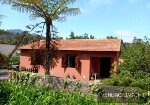 http://www.vendactiva.pt/imovel/moradia-venda-santana-sao-jorge_10